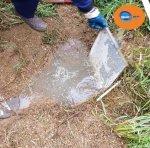 limpieza fosa septica, pide presupuesto, girojet Girona
